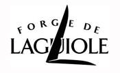 les forges de Laguiole s'équipent en vidéosurveillance visionaute